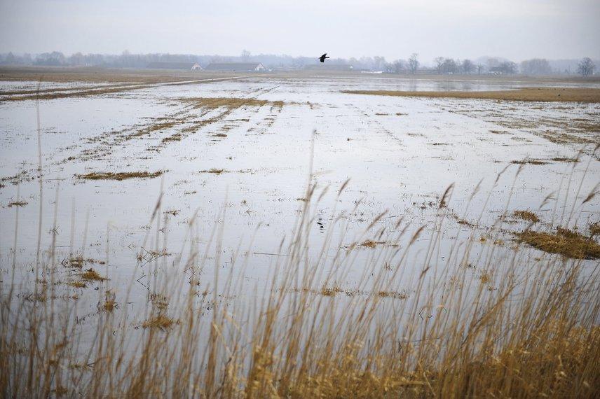 A nyaranta csontszáraz hortobágyi rónát a tél végi olvadások és az ezután következő áradások egyaránt fenyegetik. Mivel a hétvégén hirtelen megolvadt a hó, a vizet elnyelni képes talaj pedig még nem engedett ki, a belvíz már most elöntötte a vidéket.