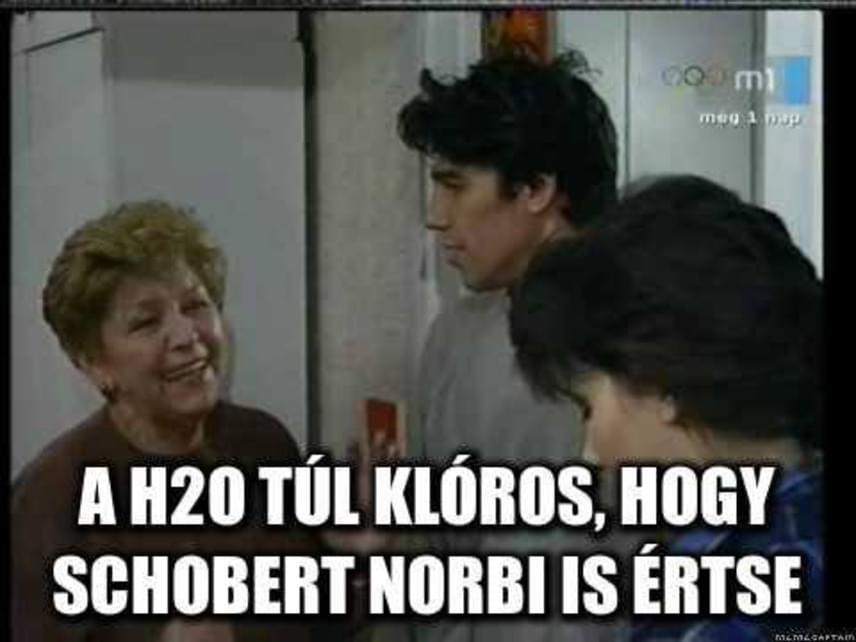 A Szomszédok forever és Janka néni sem mehetett el Schobert Norbi posztja mellett.