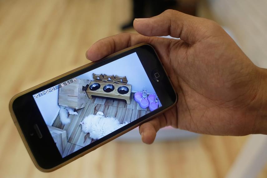 A gazdik messziről is követhetik, mit csinál éppen kedvencük: ilyen, amikor egy macskatulajdonos a mobiltelefonján nézi az egyik szobában elszállásolt macskáiról készített felvételt.