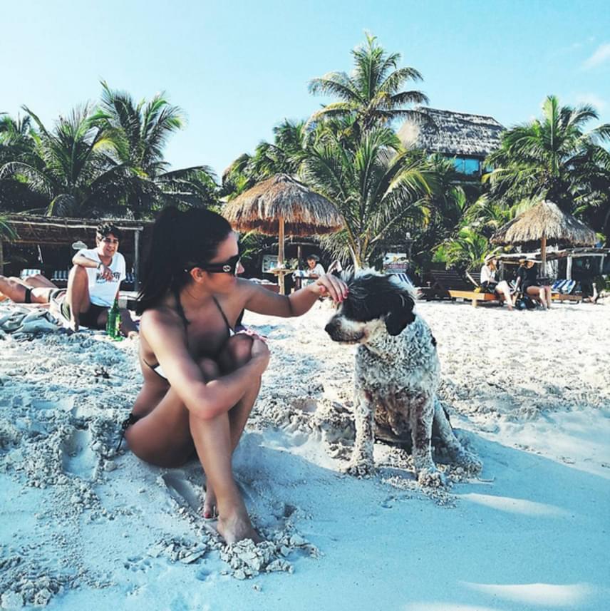 Debreczeni Zita ne csak a napsütötte tengerpartot és a zöldellő pálmafákat élvezte, hanem egy kutyus társaságát is.