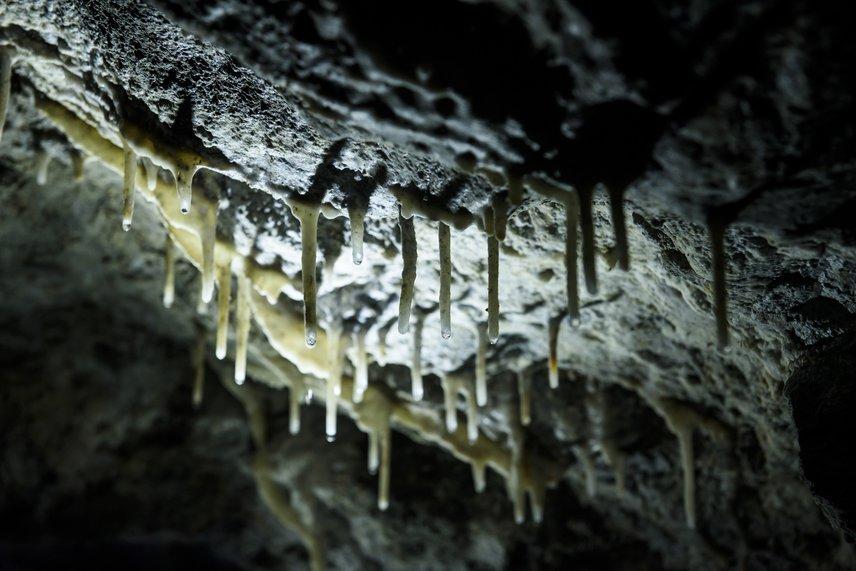 A szalmacseppkövek a látványos függőcseppkövek előzményeinek számítanak, amelyek a természetben leggyakrabban karsztos barlangokban alakulnak ki egy nagyon lassú folyamat útján. Itt ugyanakkor nem mészkőből, hanem homokkőből oldódott ki a kalcium-karbonát, majd az elpárolgó szén-dioxid gyors lerakódást tett lehetővé.