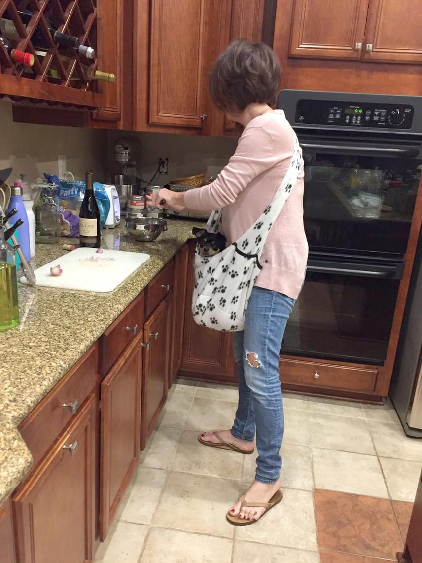 A táska nem volt üres: a család kedvence elégedetten kukucskált kellemes és ínycsiklandóan illatos kuckójából.