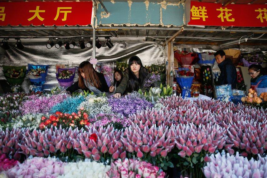 A nagy nap előtt Kína is igazi virágárban úszik. A fotó egy árus standjánál készült egy pekingi virágpiacon, ahol a vásárlók már bőszen válogatnak a portékából.