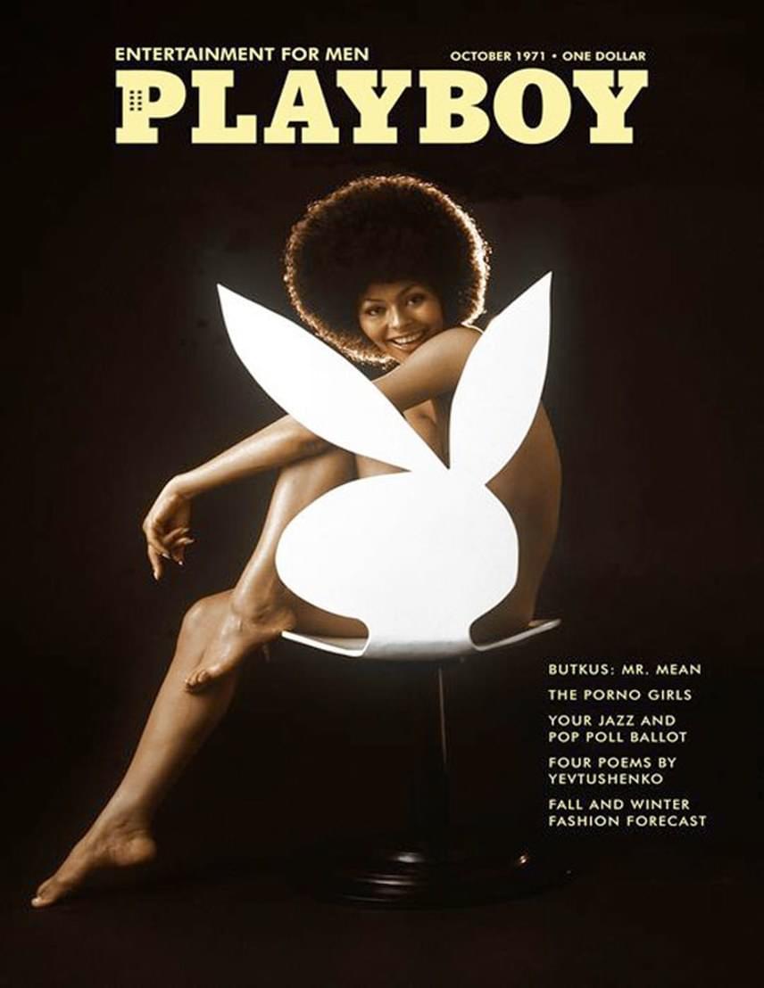 Habár a hatvanas években a Playboy magazinban már két alkalommal is szerepelt színesbőrű playmate, az első címlapfotóra 1971 októberéig kellett várni. Ekkor Darine Stern került a borítóra, a fotó pedig történelmi jelentőségű pillanat volt nemcsak a magazin, hanem egész Amerika életében.
