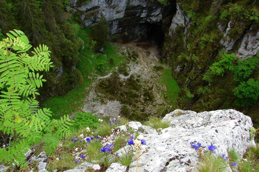 A Pádis-fennsíkon járva a túrázók megcsodálhatják a Szamos-bazárt, mely sok-sok barlang, sziklatorony, meredek falak és vízesések összefoglaló neve. Az útvonal egyik legszebb pontja az itt látható Belvedere-kilátó, mely nemcsak fantasztikus panorámát nyújt, de környékén nagy számban nyílik a kékvirágú, keskenylevelű nyalábcsengőke is.