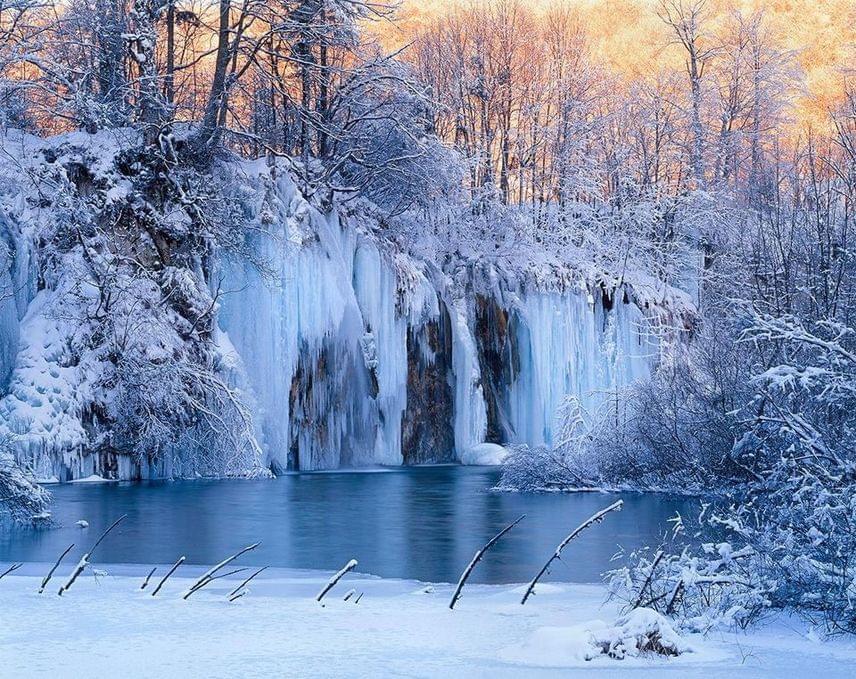 A Plitvicei-tavakat és a környező erdőségeket már 1949-ben nemzeti parkká nyilvánították. Rengeteg védett állatfaj otthona, élnek itt medvék, farkasok, vidrák és fülesbaglyok.