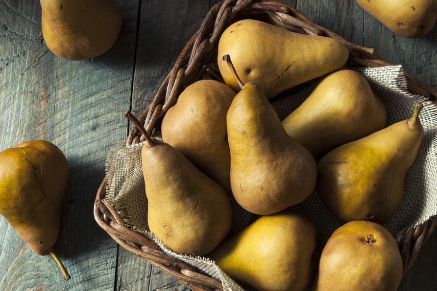 A körtében, az almában és sok más gyümölcsben is megtalálhatóak a pektin nevű rostok, melyek fizikálisan tisztítják az emésztőrendszert, így tehermentesítik a májat. A diéta alatt legalább egy-két gyümölcs elfogyasztása kötelező naponta.