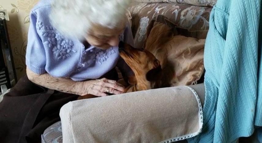 A nagymama, Winifred 95 éves, és Alzheimer-kórban szenved. Unokája szerint vannak rossz és jó napjai, néha nagyon zavart és feldúlt, olykor dühös is. A kilenc hónapos tacskó, Orla közelében azonban ennek nyoma sincs.