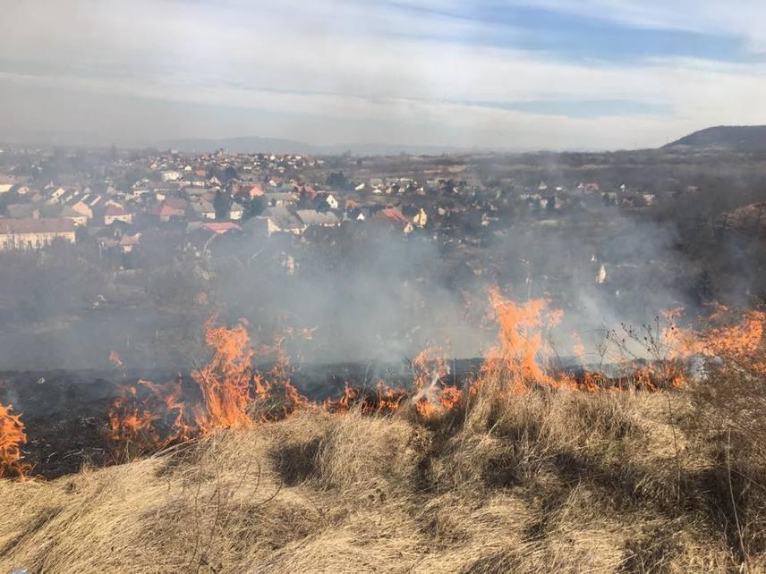 Bár az egész ország területén tűzgyújtási tilalom van érvényben, a Tokodi Önkéntes Tűzoltókat szinte szünet nélkül riasztják a Hegyes-kőhöz. A füves területeket ugyanis kényük-kedvük szerint gyújtogatják fel a vandálok. Az elmúlt napok viharos szelei miatt gyorsan terjed a tűz a száraz növényzeten.