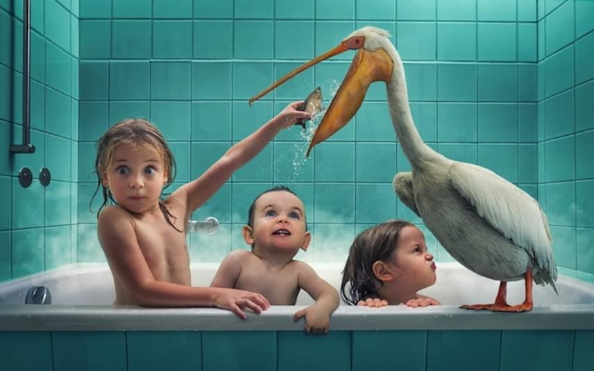 A fürdés már hármasban is óriási kaland, akkor pedig különösen, ha egy pelikán is ott ül a kád szélén.