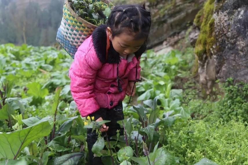 Anna megélhetésük biztosítására kénytelen néha mások segítségére hagyatkozni. Az egyik jólelkű szomszédjuk például megengedi, hogy a kislány a farmján gyűjtögessen zöldségeket, így nem halnak éhen.