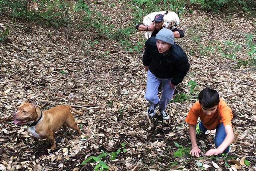 Miután kiemelték a vízből, a férfi a vállain vitte hazafelé az elgyengült állatot, majd később gondoskodott arról is, hogy Sage visszakerüljön szerető gazdáihoz, a Cole családhoz.
