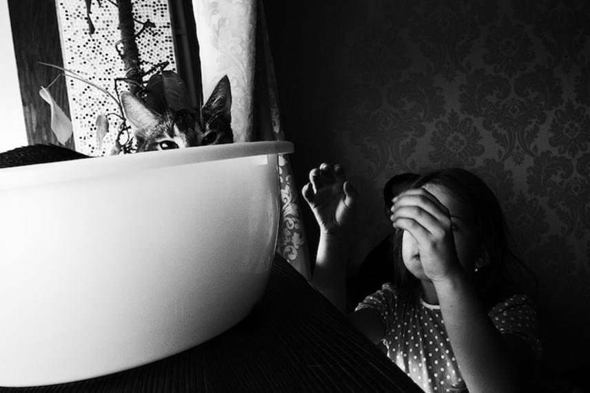 A Bújócska című fotó Olga Ageeva egy másik magasan elismert alkotása, mely az életmód kategóriában ért el második helyezést.