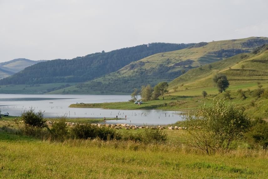 A tóból jelenleg másodpercenként négy köbméter vizet engednek le a Kis-Küküllőbe. A tározó előreláthatóan másfél hónap múlva éri el a javítási munkálatok elkezdéséhez szükséges szintet. Ekkorra láthatóvá válik az egykori Bözödújfalu egész területe. Csibi Attila Zoltán úgy tudja, hogy a mesterséges tavat ősszel töltik fel újra.