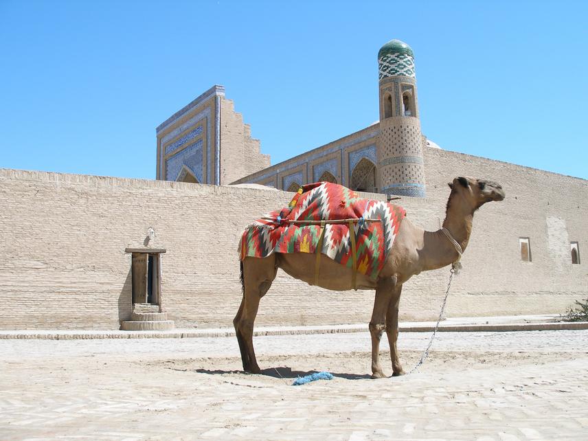 Szívesen tevegelnél a sivatagban, a selyemút nyomán járva? Vacsoráznál a tábortűz mellett, miközben egy kazah énekes archaikus dalait hallgatod? Üzbegisztánban ezt is megtalálod.