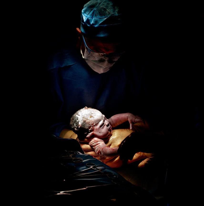 Egy újszülött első másodpercei: az óvó anyaméhből kibújva megtette első lépéseit az úton, melyet a sors neki szánt.