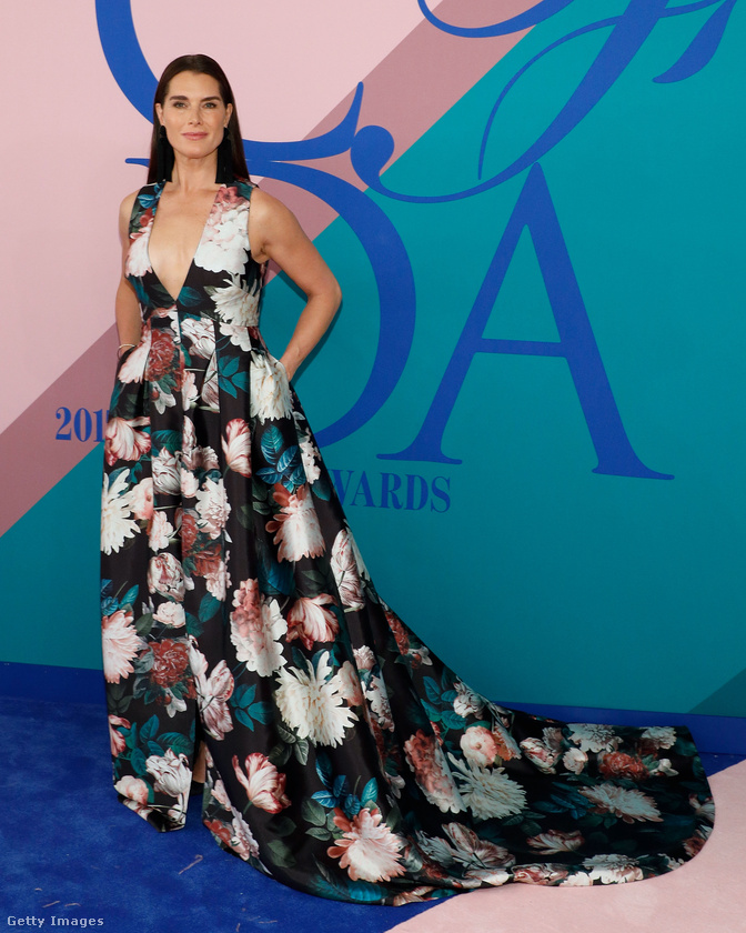 Ő Brooke Shields! Még jobban állna neki ez a ruha, ha nem lakástextil-üzletben vásároltak volna hozzá anyagot, de nem baj, Brooke Shields így is, 52 évesen egy ragyogóan szép és elegáns nő