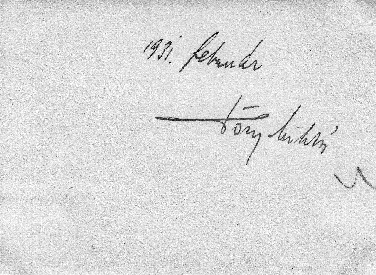 Tőry Miklós aláírása az egyik fotó hátoldalánTőry családja régi budai német polgárfamília volt. Az egykori családfő, Spiesz Gusztáv Adolf 1847-ben császári engedéllyel változtatta családnevét Tőryre. Három fia már ezen a néven lett híres. A legidősebb, Gusztáv volt az első jogász a családban, több mint három évtizedet töltött az Igazságügyi Minisztériumban: volt államtitkár, a polgári törvénykönyv előkészítésével megbízott minisztériumi bizottság elnöke és 1918-ban a harmadik, rövid életű Wekerle kormányban igazságügy-miniszter. A középső fiú, Tőry Emil építészként lett ismert, Hárshegyi út 14. szám alatt álló saját villája mellett ő tervezte többek között az egykori Homeopata (Schöpf-Merei) Kórházat a Bakáts téren, az Adria Biztosító Társulat székházát (ma Hotel Meridien) a Deák téren és a Nemzeti Színház-pályázat nyerteseként haláláig dolgozott a két világháború miatt akkor meg nem valósult épület tervezésén. A legkisebb fiú dr. Tőry József, Tőry Miklós apja szintén jogtudor, igazságügyi államtitkkár volt. Első házassága, melyből Tőry Miklós is született, 1909-ben válással végződött. Egy évtizeddel később azzal okozott családi botrányt, hogy feleségül vette gyerekei egykori német Fräulein-jét.