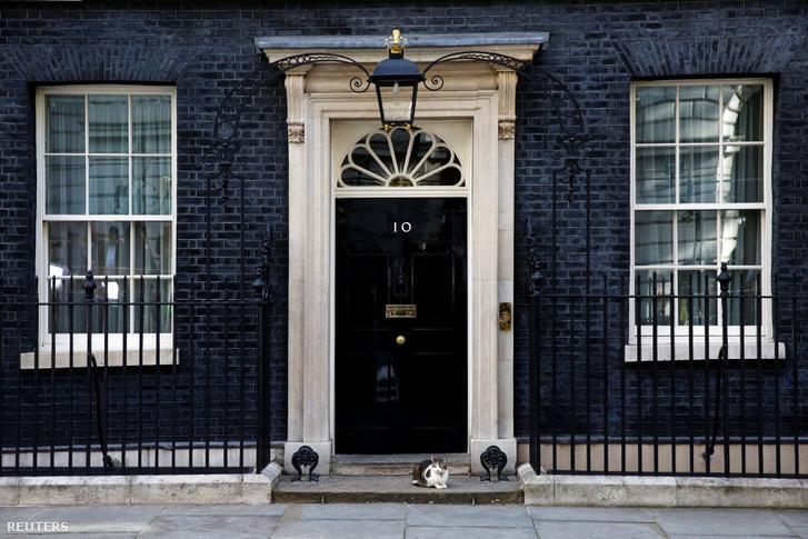 Larry, a Downing Street macskája ül Theresa May irodája előtt.