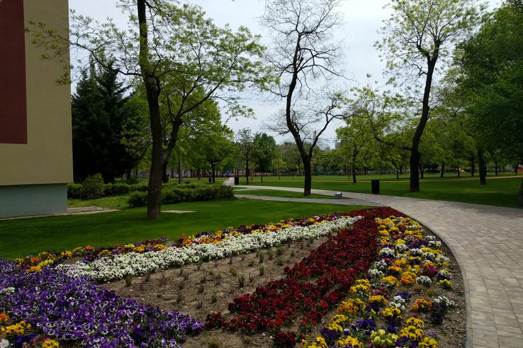 Ugyanez a sarok a felújítás után: új szemetesekkel, virágágyással és a kitaposott ösvényeket követő sétánynyomvonalakkal