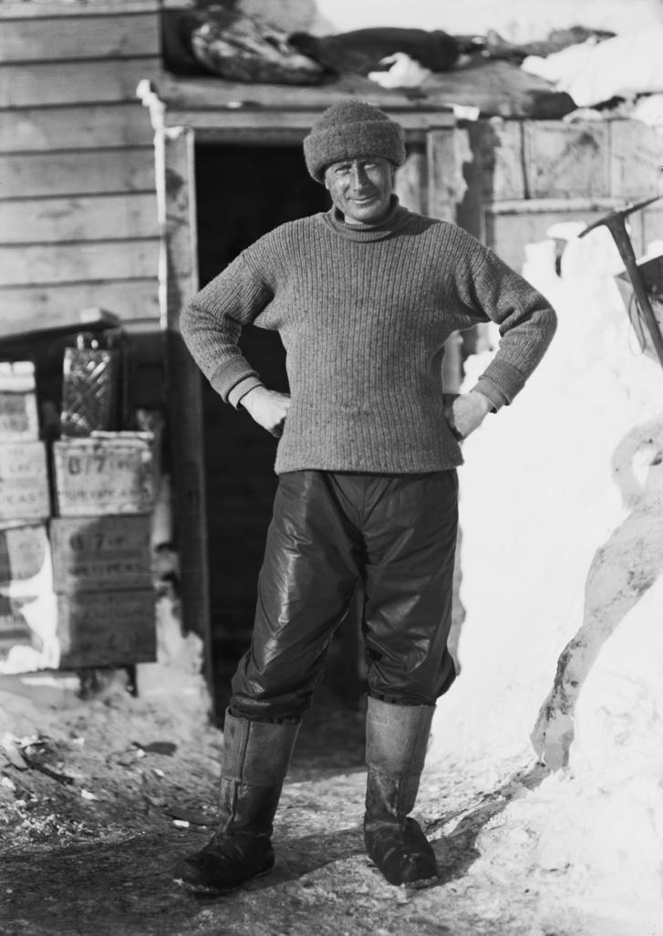 Edward Wilson, a kép festője