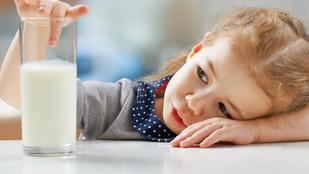 Minden, amit a tejről és a tej növényi alternatíváiról tudni akartál