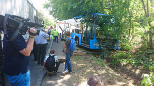 A fák között kötött ki egy BKV busz a XVIII. kerületben