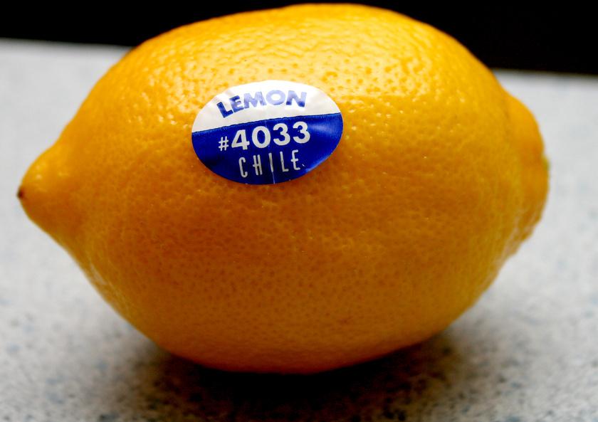 citrom-matrica