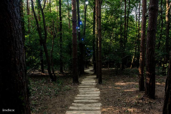 Ezen a kis ösvényen lehet elindulni a Hagymához, ahol egy pianinón fognak játszani a zenészek.