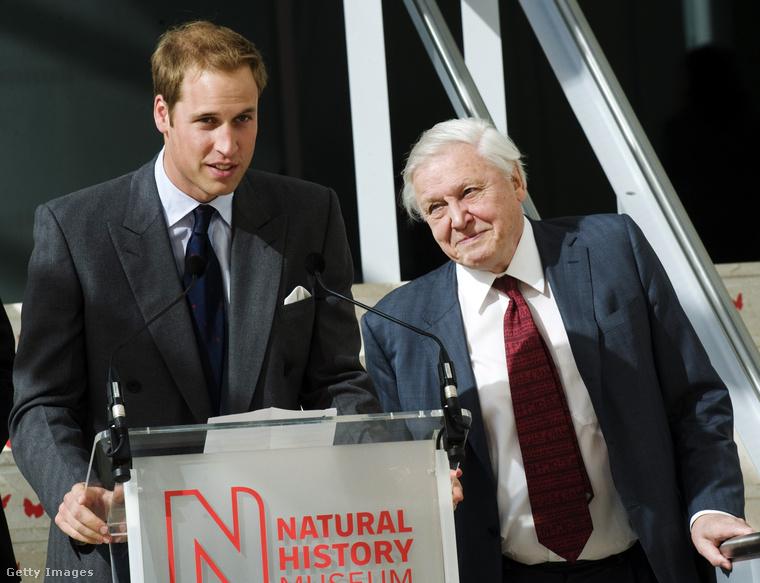 David Attenborough-val készült közös fotójával búcsúzunk Vilmos hercegtől, egyben megragadjuk az alkalmat, hogy jelezzük, a természettudósról is van hasonló összeállításunk