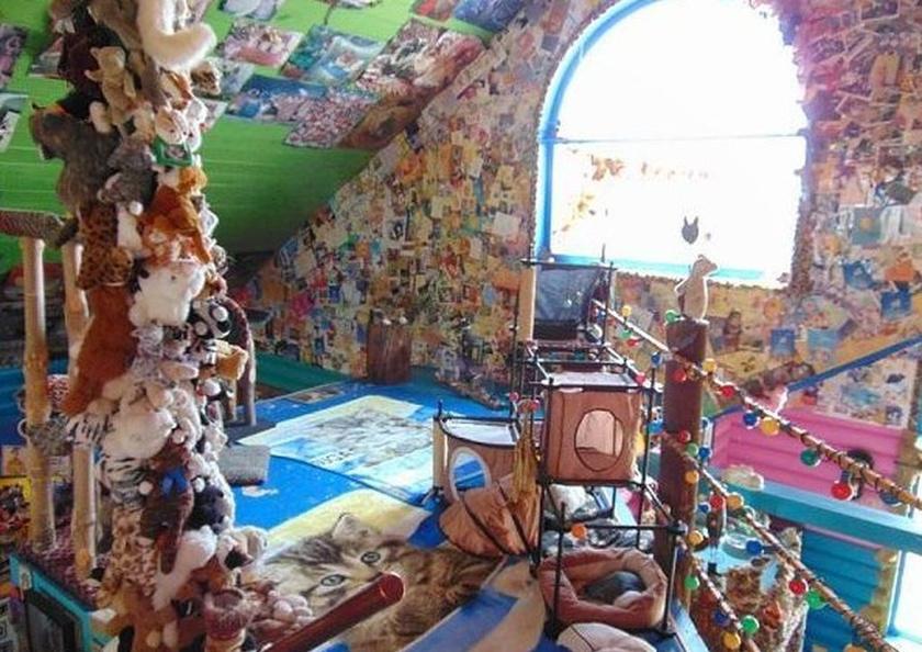 A szobák tágasak, világosak, valamint tele vannak színes játszó- és pihenőhelyekkel.