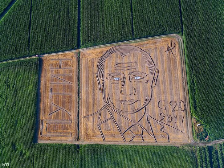 Légi felvétel Dario Gambarin olasz művész Vlagyimir Putyint ábrázoló portréjáról. A művész július 3-án így tiltakozott a G20 ellen a Verona közelében fekvő Castagnaro egyik szántóföldjén