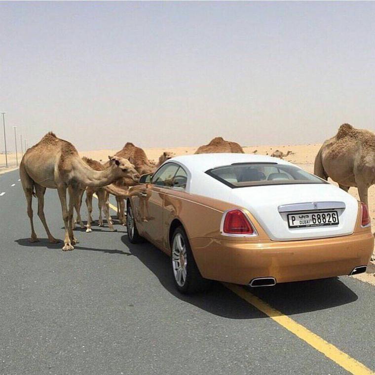Mondjuk egy dubaji gazdag gyereknek szüksége is van a navigációra, hiszen ilyen mókás helyzetekbe lehet keveredni,