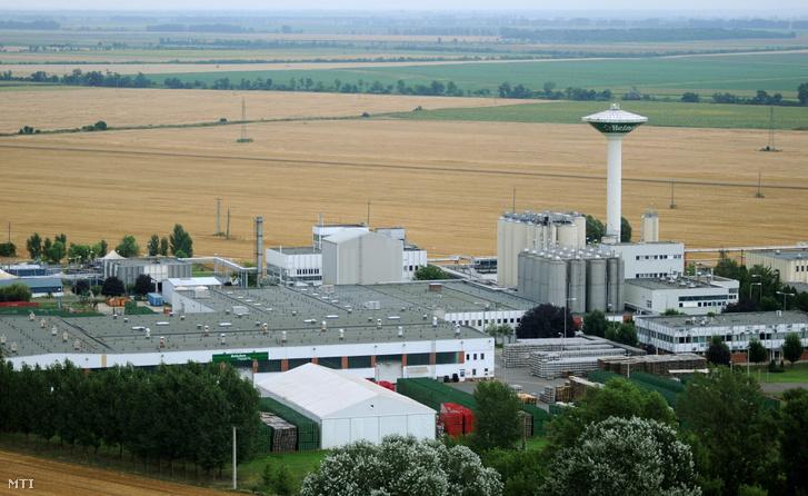 A martfűi gyár