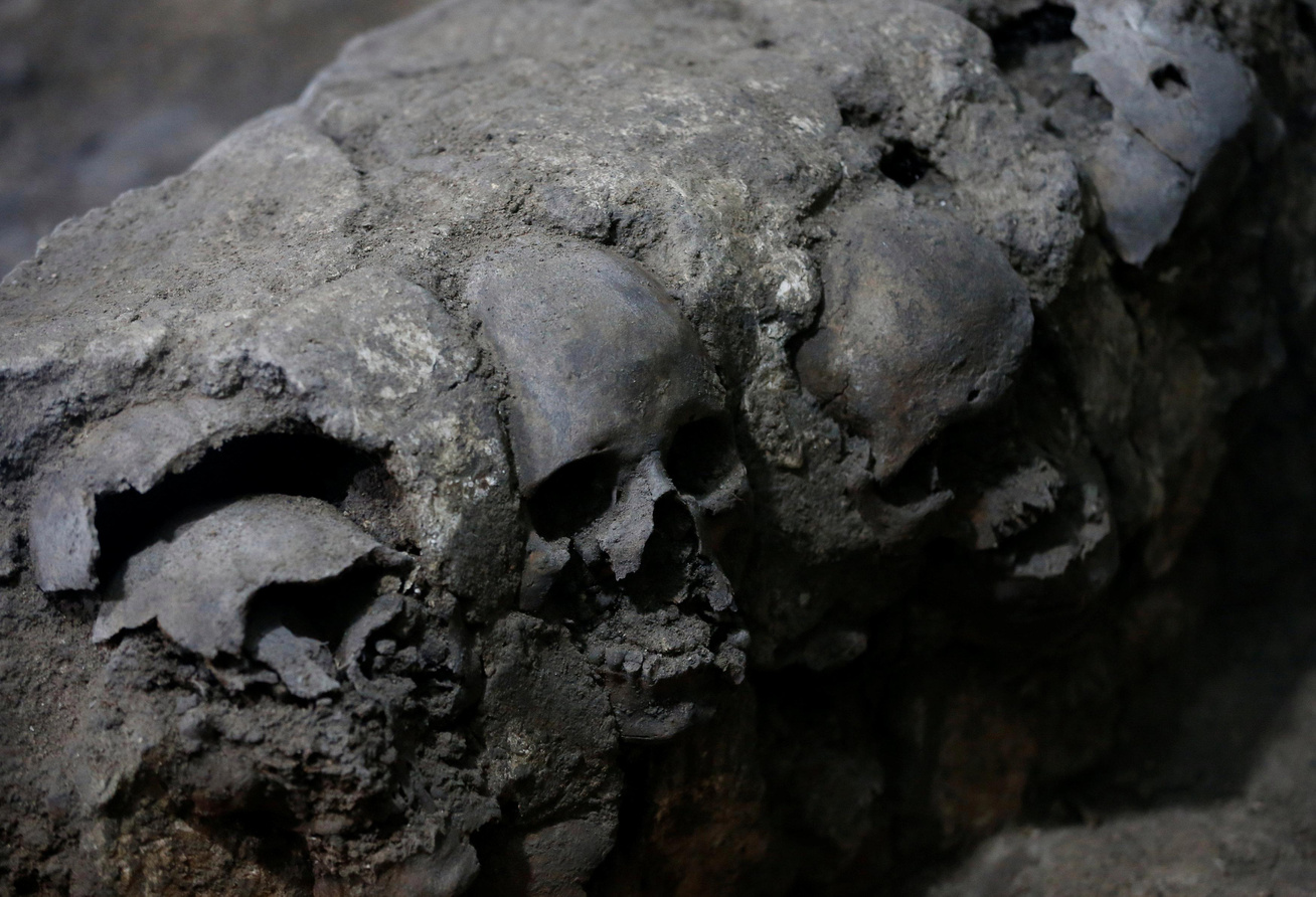 koponya-nagy
