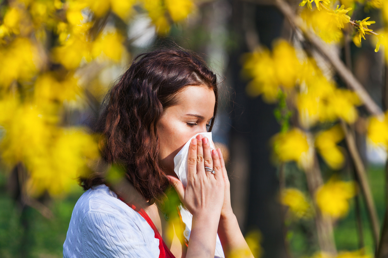 nátha-allergia