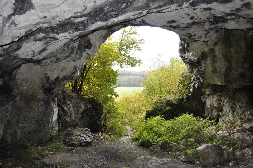 A németországi Sváb-Alb hegység hat barlangjában az 1860-as években fedezték fel a jégkori ember egyik legrégibb ismert kultúráját, művészeti alkotásait.