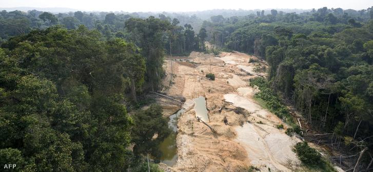 Erdőirtás az Amazonas mentén