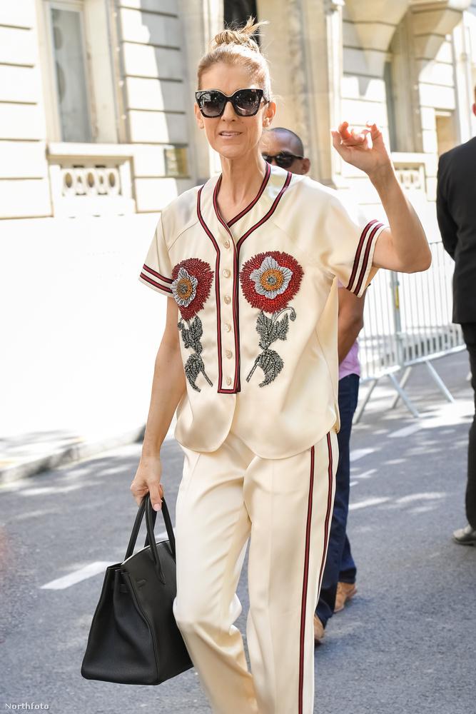 A hírességek általában nem díjazzák túlzottan, ha lesifotósok zaklatják őket, Céline Dion azonban nem egy átlagos híresség.