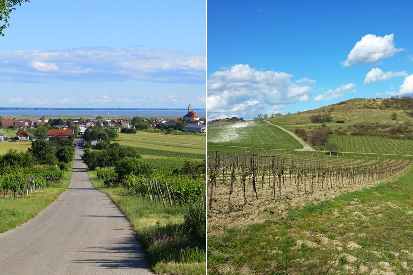 Jois, magyarul Nyulas a Fertő tó északi partjánál terül el. A bortermelő vidék nemcsak a zamatos nedűi miatt, de biciklitúrái és hagyományos településképe miatt is népszerű.