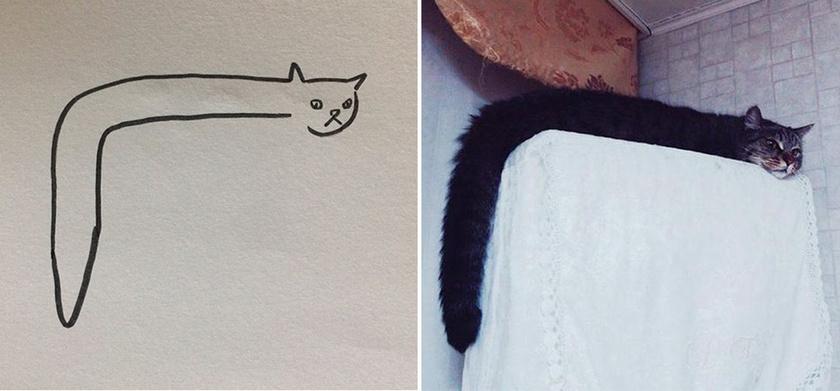 Gyanús, hogy macska helyett kígyó szerepel a rajzon, pedig a bizonyíték egyértelmű.