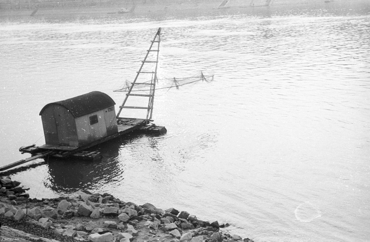 Úszóház és tápli a Margit-sziget budai oldalán 1942-ben. A sajátos halászmódszert űzők még nem szorultak ki a Kopaszi-gátra és a Népszigetre.