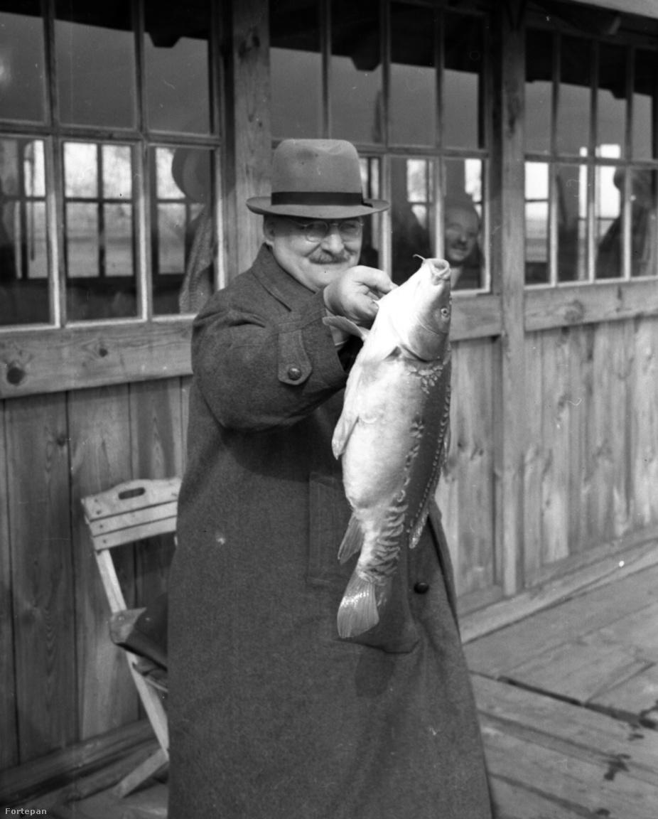 A szintén 1942-ben készült kép valószínűleg karácsony környékén készülhetett egy halpiac közelében. A szerencsés vásárló szakszerűen tartja a frissen szerzett 3 kiló körüli tükörpontyot.