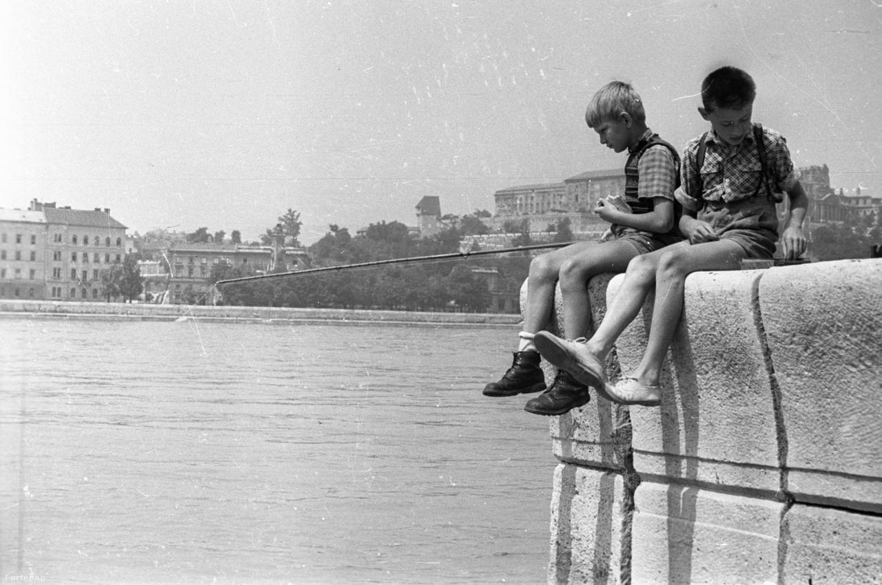 Gyerekek próbálkoznak mogyorófavesszővel a Parlament környékén a rakparton 1957-ben. A kisebb keszegek, snecik megfogására a lúdtollas úszóval, hajlított gombostű horoggal felszerelt botokat általában paprikás kenyérgyurmával csalizták, a horgászat alapjait kiválóan meg lehetett tanulni ezekkel az egyszerű szerelékekkel. Jelen sorok írója is így kezdte a ságvári Jaba-patakon, bár folyami rákot többet fogott, mint snecit, viszont a csattogó ollójú rákokkal eredményesen lehetett kergetni a nagyobb kölyköket is a falu utcáin, amit később persze nagy verés követett a másik oldalról