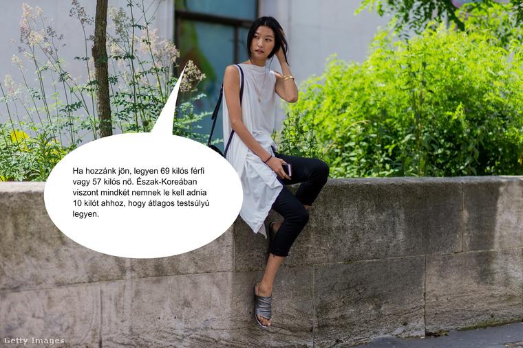 Viszont a Dél-Koreából származó sikeres modellnő, Ji Hye meglepő adatokkal szolgál az országa lakóit tekintve, már ami az északi és a déli területek különbségeit érinti