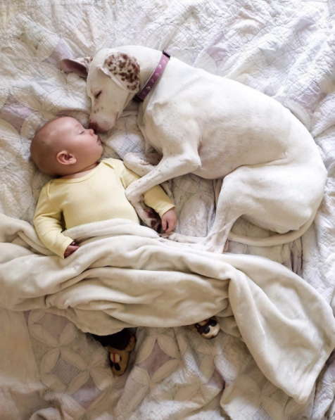 Szinte a kisbaba születésétől fogva ölelkezve alszanak.