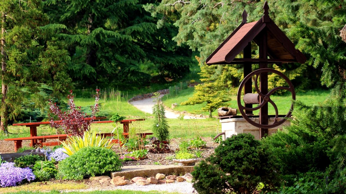 folly arboretum cover