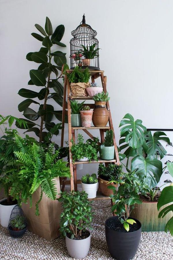 A növények is párologtatással hűtik otthonod, de ezt sem szabad túlzásba vinni. A túl párás levegőt a test melegebbnek érzi, mint a szárazat!