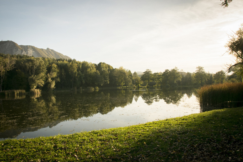 A tó partján tűzrakóhelyek várják a bográcsozni, sütögetni vágyókat. A rendben tartott gyep tökéletes napozáshoz, a víz pedig nyáron strandolásra is alkalmasan felmelegszik.