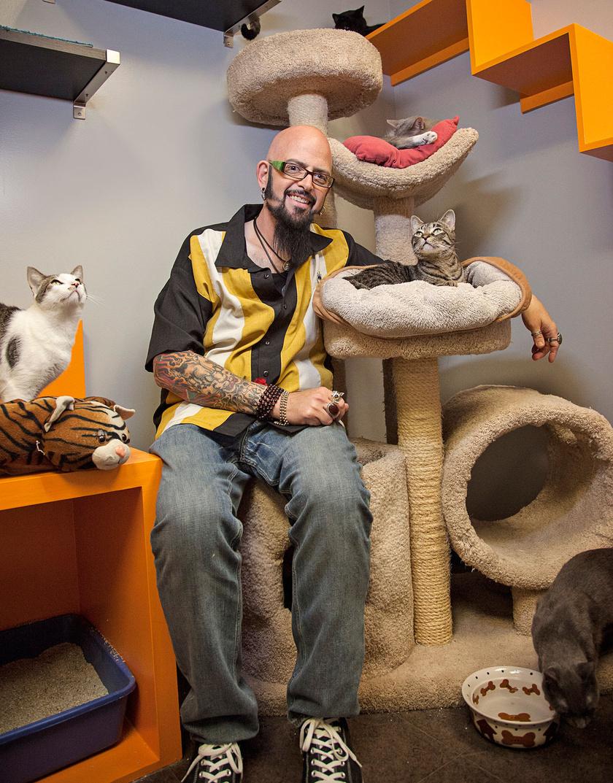 Jackson szerint létezik a Cat Mojo, mely olyan macskatartási metódust jelent, ami tökéletesen harmonikussá teszi a cicák és a gazdik között lévő, olykor kaotikus viszonyt.